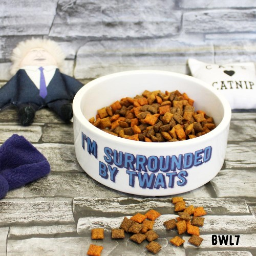 Surrounded by Twats Pet Bowl