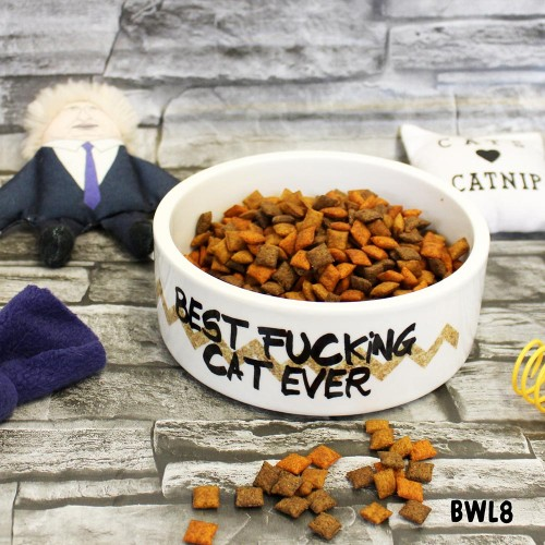Best Fucking Cat Pet Bowl