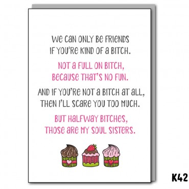 Bitches Friends