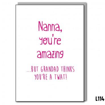 Nanna Amazing