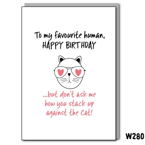 Birthday Fave Human Cat
