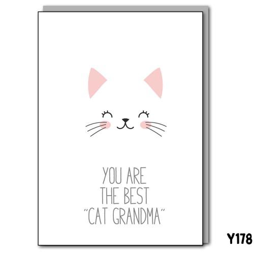 Cat Grandma
